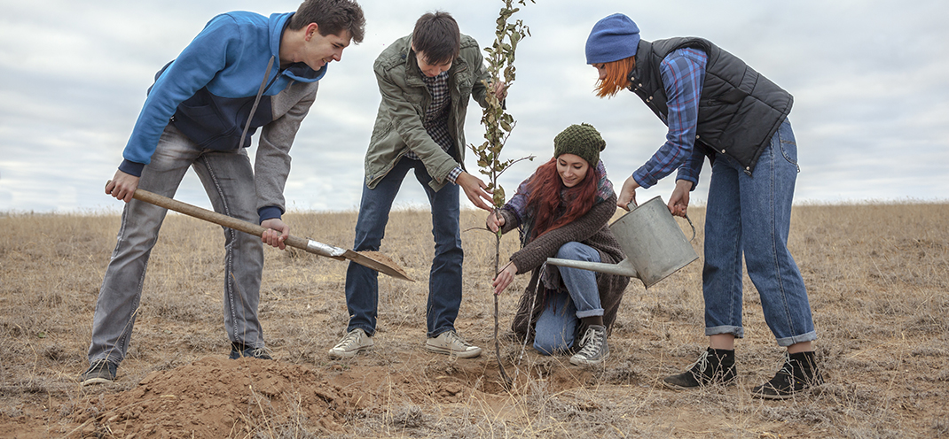 FALL IS PRIME TIME FOR TREE PLANTING
