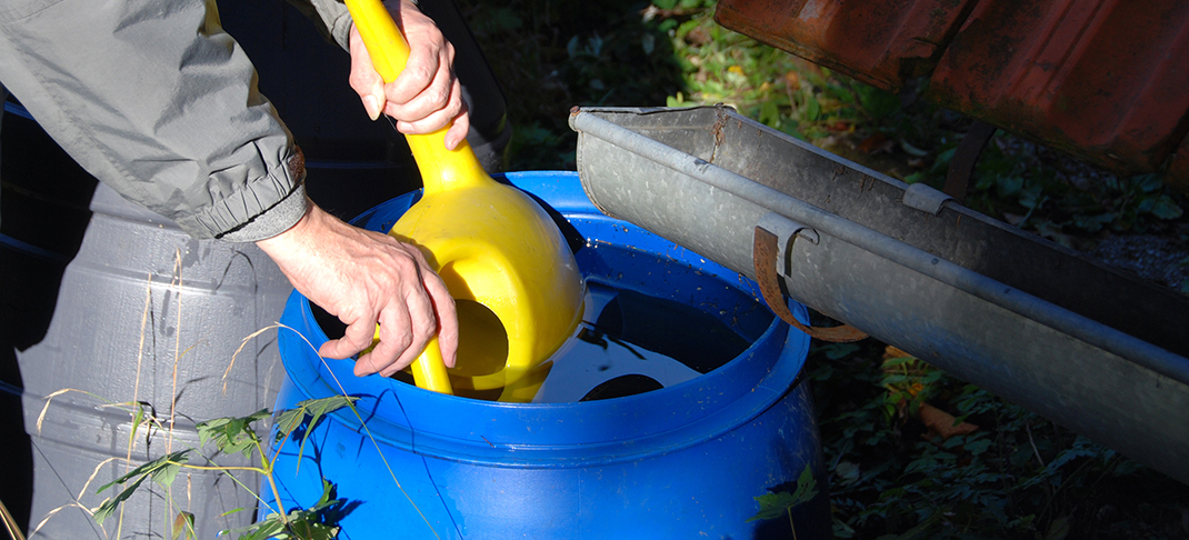 Saving for a sunny day: Rainwater collection can make a big difference